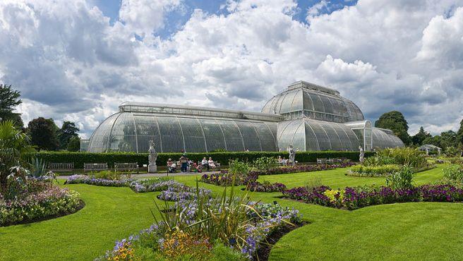 Jardins Botânicos de Kew - Saiba mais em http://www.kew.org
