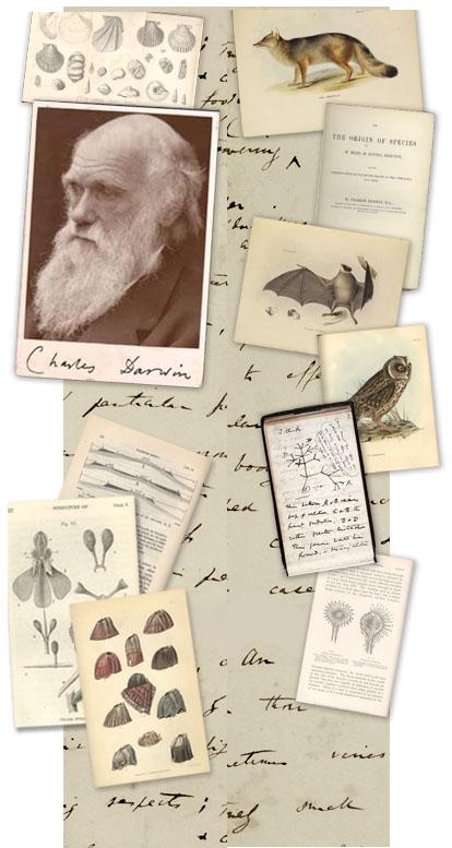 Darwin Online